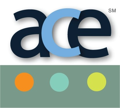 Consultants Academy provided by ACE